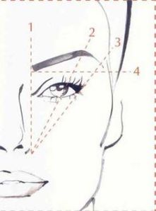 A great guideline for eyebrows and eyeliner - #3 is key!!
